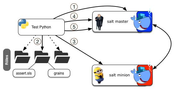 salt & docker